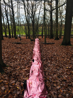 Pink Tree Installation