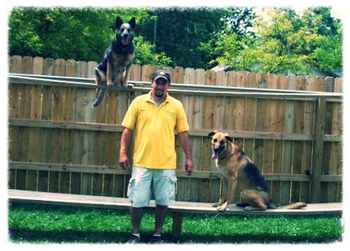 columbus ohio dog training