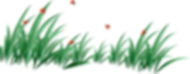 grass_PNG4923.png
