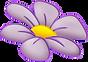 hello_html_m46b99390_edited.png