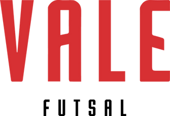 Vale futsal logo trans.png