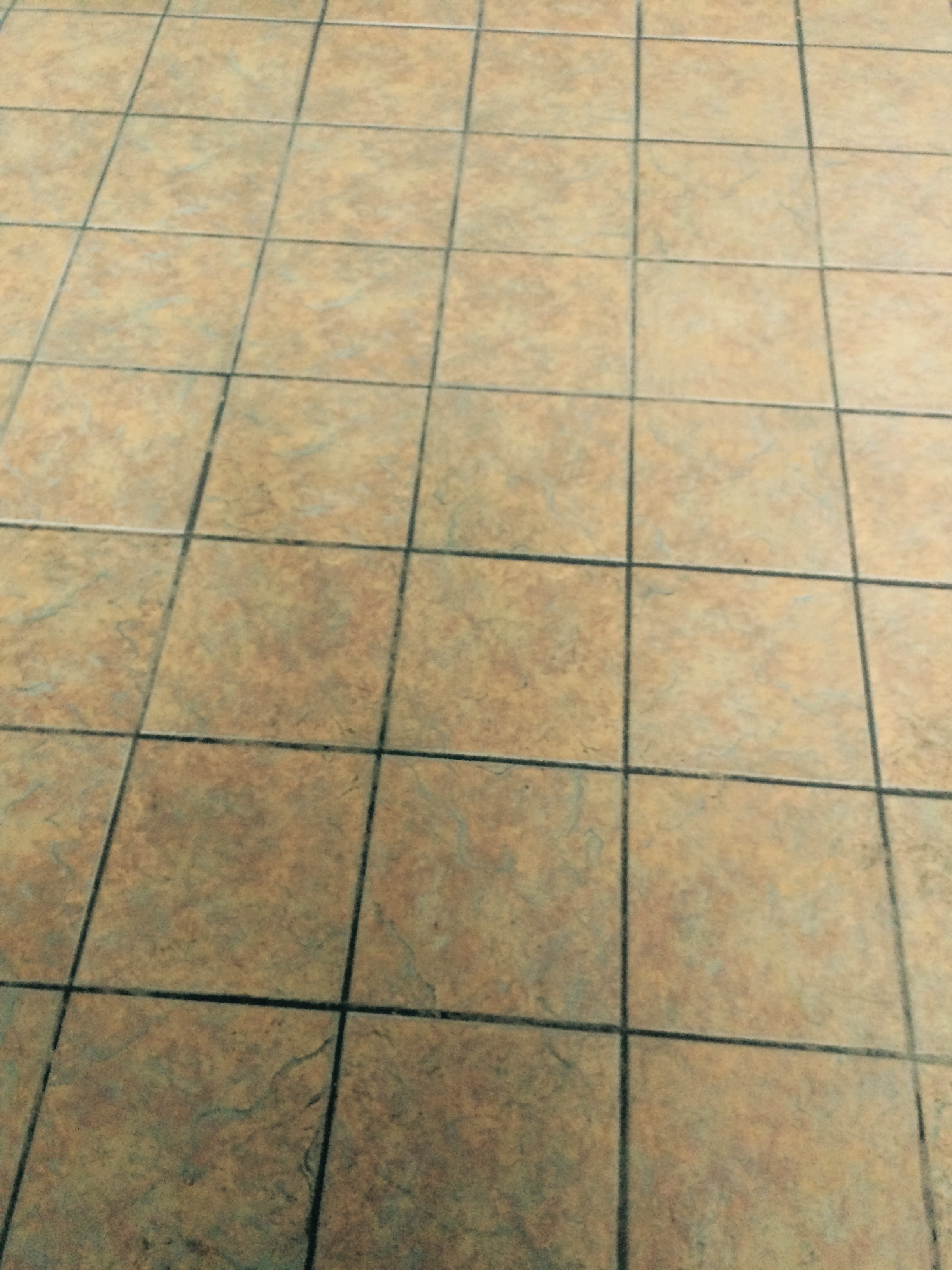 Local Restaurant Floor Cleaning