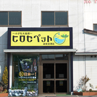 成田空港店外観.png