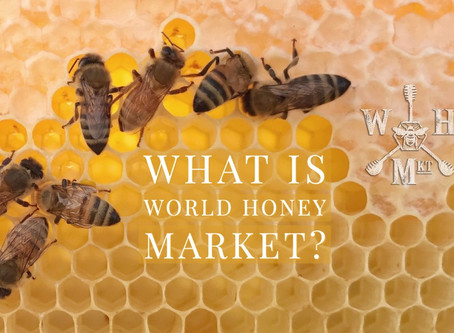 What is World Honey Market?