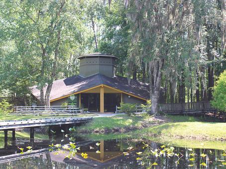 World Honey Market makes its mark on the Okefenokee Swamp Park