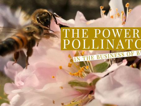 The Power of Pollination