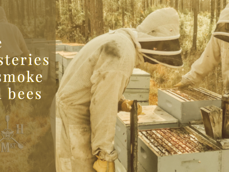 The mysteries of smoke and bees