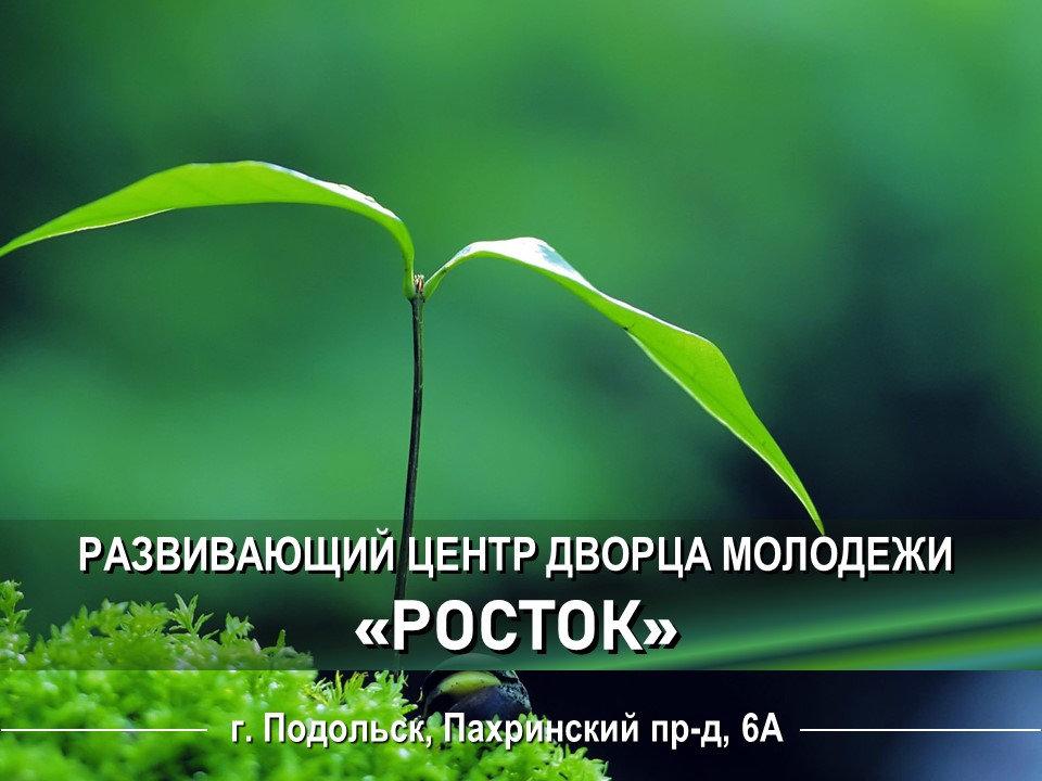 Росток фото.jpg