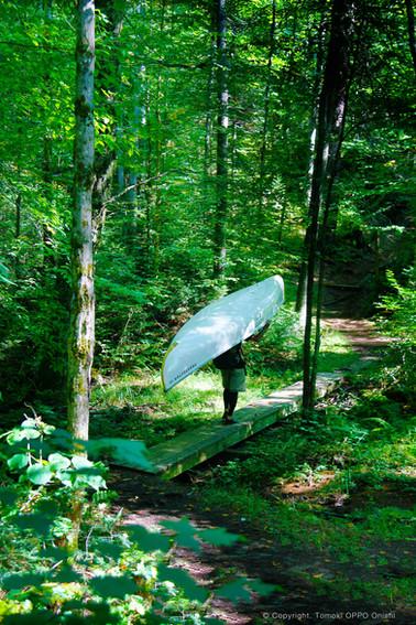 カヌーを担いで森の中を行く、ポーテージ。
