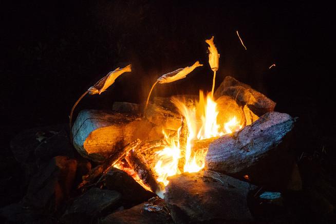 釣った魚を焚き火で焼く。最高のご馳走!