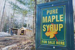 MapleStills6
