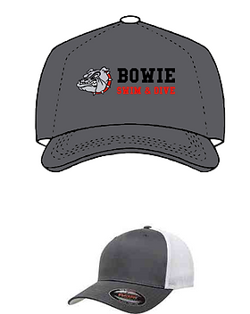 Bowie swim hat.PNG