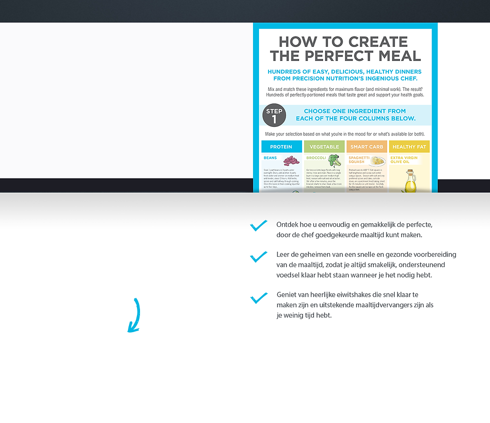 Landing Page (Raw) invoer.png