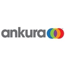 Annual Ankura-McIntire Case Competition