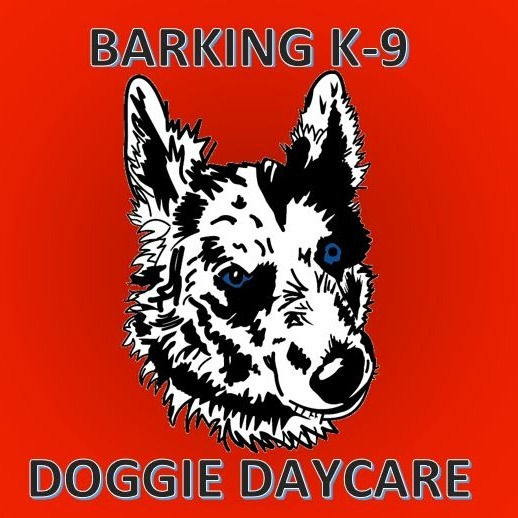 Bar K-9 Member Bundle Daycare Month Pass