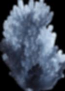 element_31.png