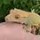 Thumbnail: Female Harlequin Crested Gecko