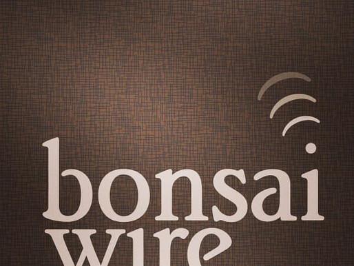 Bonsai Wire: New Podcast!