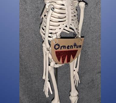 Free Webinar: Together We Can Learn About Living Without an Omentum (May 30th)
