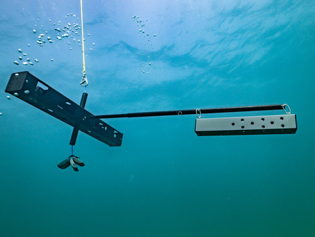 United Kingdom launches world's largest ocean wildlife monitoring system using Blue Abacus BRUVS.