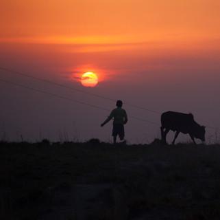 Young Kumari Boy at Sunset