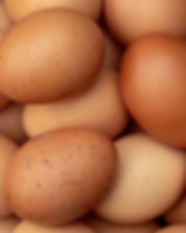 a-basket-of-eggs.jpg