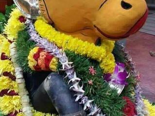 மஹான் நந்தீசர்