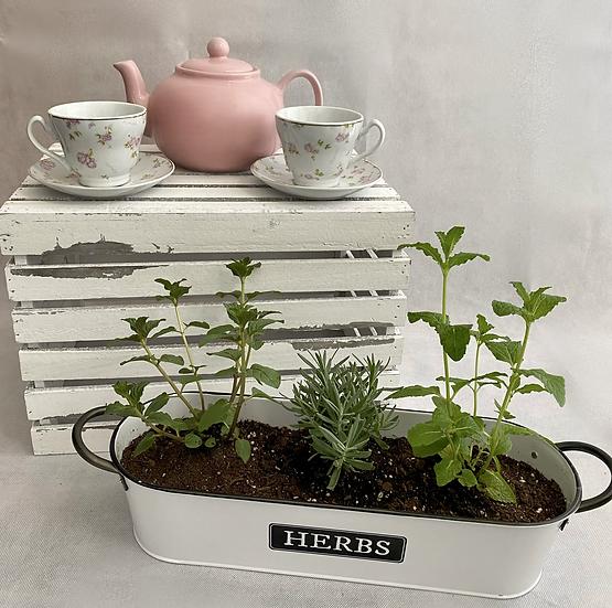 Tea for Two Garden