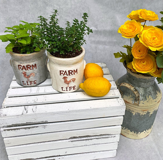Farm Life Lemon Collection