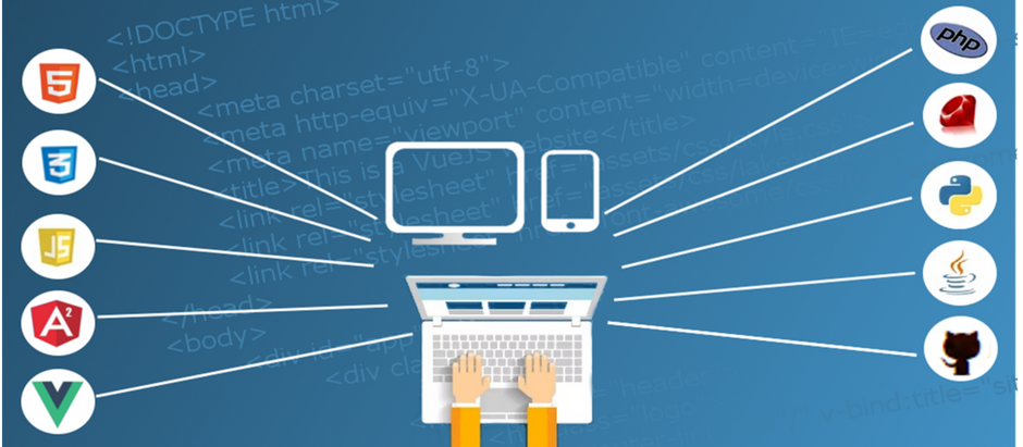 What You Should Look For When it Comes to Web Hosting