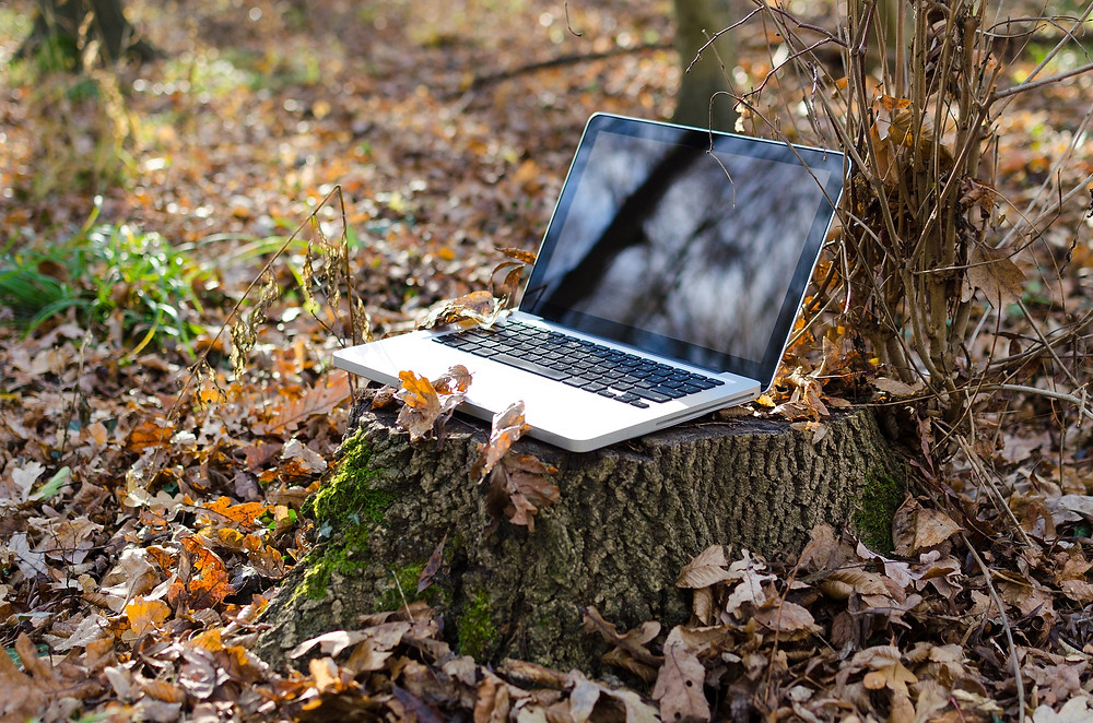 How Remote Work Can Help Your Startup