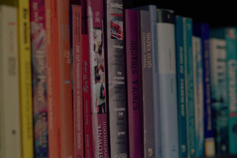 Canva - Colorful books2.jpg