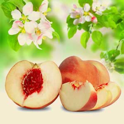 White Peach Spray