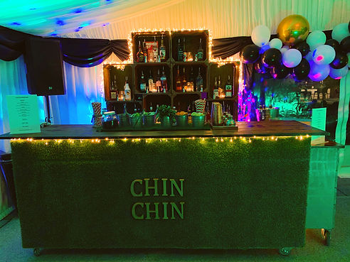 Chin Chin Lawn Bar at Steve's 45th Birth