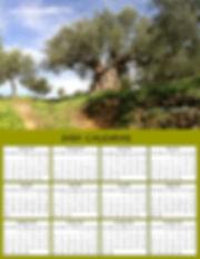 YEAR SPARTA OLIVE TREE 2020.jpg