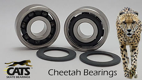 CheetahBearings.jpg
