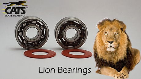 Lion Bearings.jpg