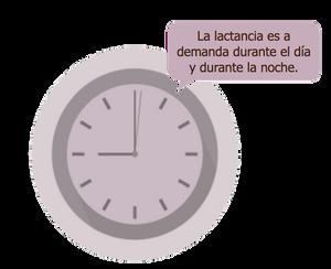 Lactancia a demanda | Sabadell