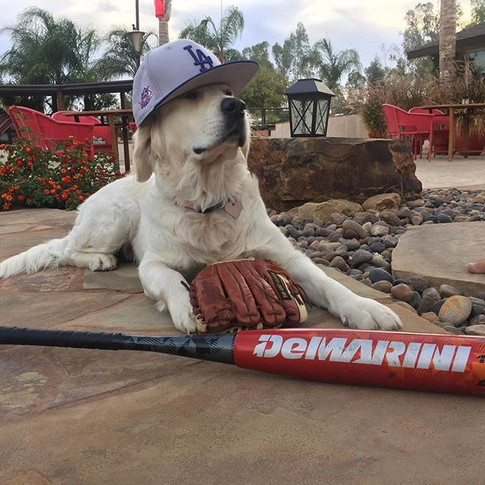 """""""Alright boys. That last game was RUFF. But I believe in you - tonight's the night.jpg"""
