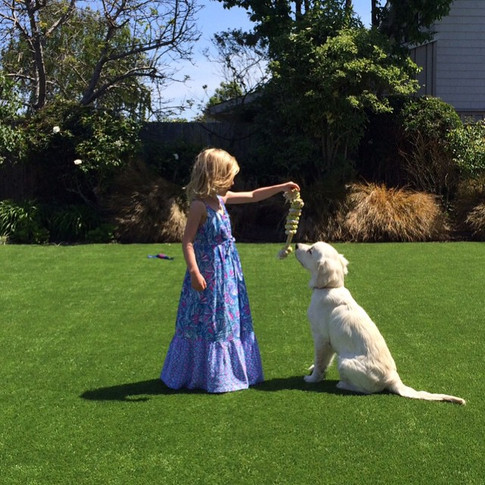 One of our sweet families sent me this picture – I think it captures the essence of childhood and a golden.jpg