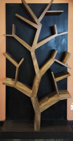Built-In Tree Bookshelves Installation