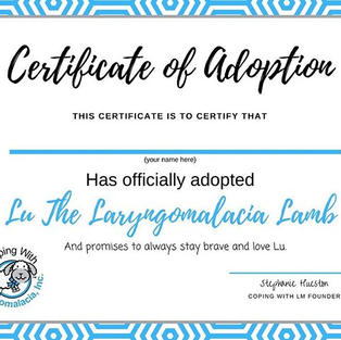 Lu's Adoption Certificate