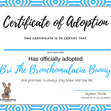 Bri's Adoption Certificate