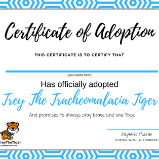 Trey's Adoption Certificate