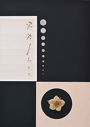 4.Flor4_Herbarium.jpg