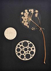 7.Flor7_Herbarium.jpg