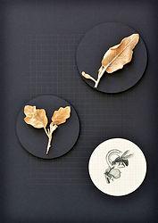 10.Flor10_herbarium.jpg