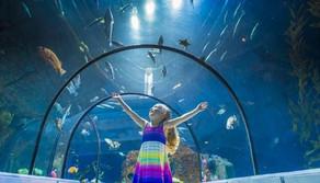 Aquarium du Québec. 23 avril 2016