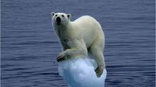 Los peligros de las enfermedades ocultas bajo el hielo durante miles de años que están despertando