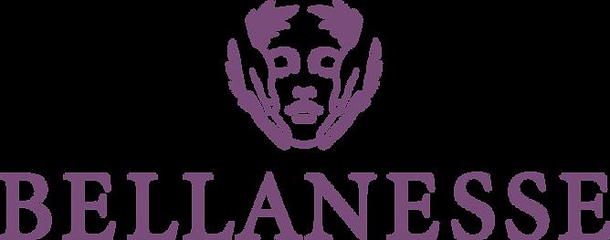 Web Logo Startseine.png